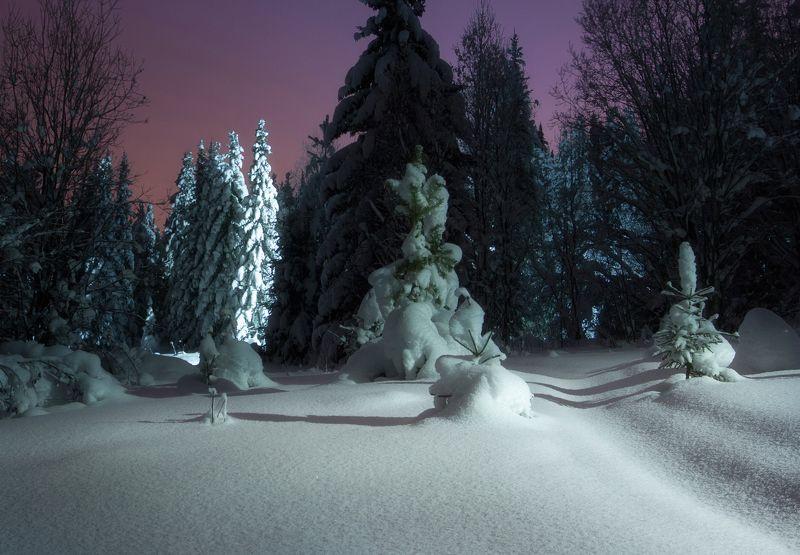 Вечером на лыжне.photo preview