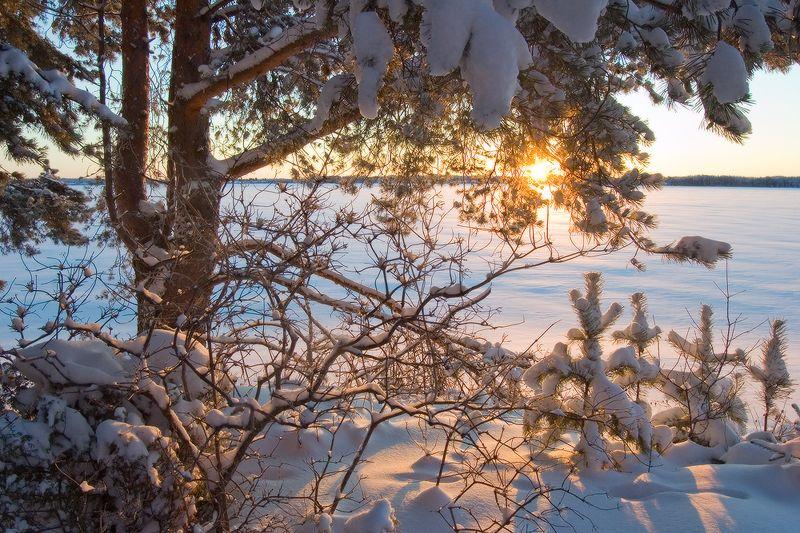 Карелия, оз. Водлозеро с Новым годом!!photo preview