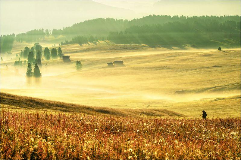 Alpe di siusiphoto preview