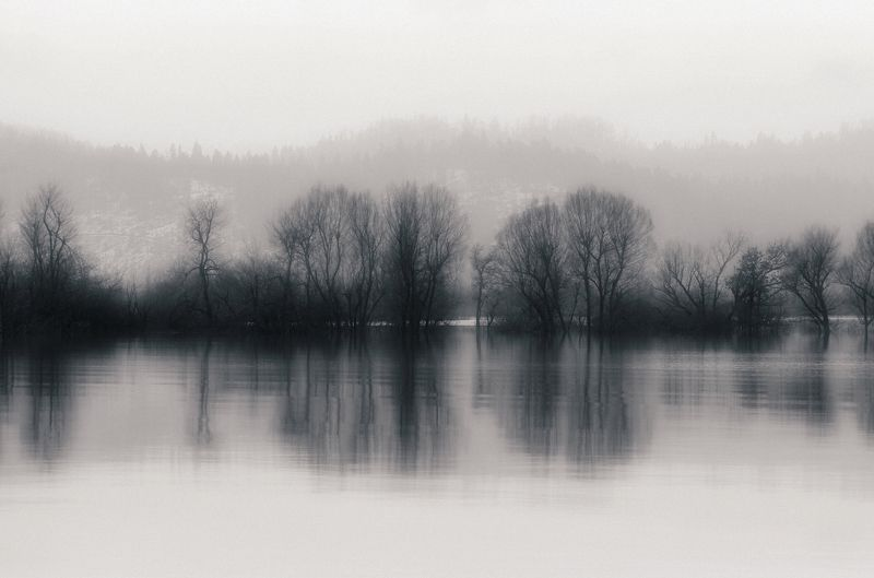 waterscape,landscape,nature,trees,water,black and white,rural,country,reflection,fine art Planinaphoto preview