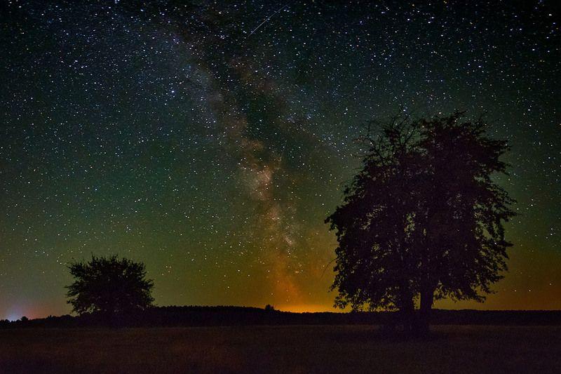 млечный путь,ночь, пейзаж, природа, звёзды, небо, landscape, nature, milky-way, sky Млечник над полемphoto preview