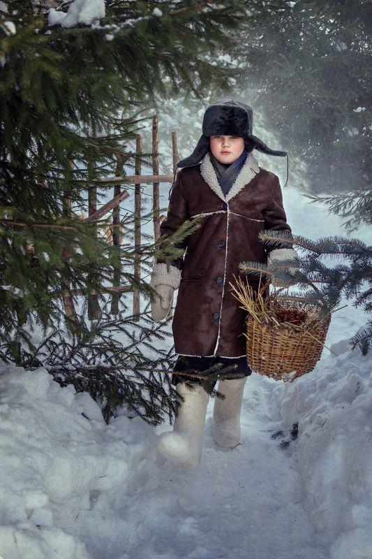 Зима, мальчик, прогулка, снег, лес, сугробы, дрова, санки Зимняя прогулкаphoto preview