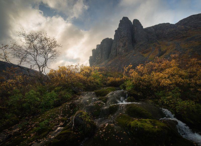 осень, кольский полуостров, горы, ловозёры, тундра, ущелье, чивруай Последний свет осениphoto preview