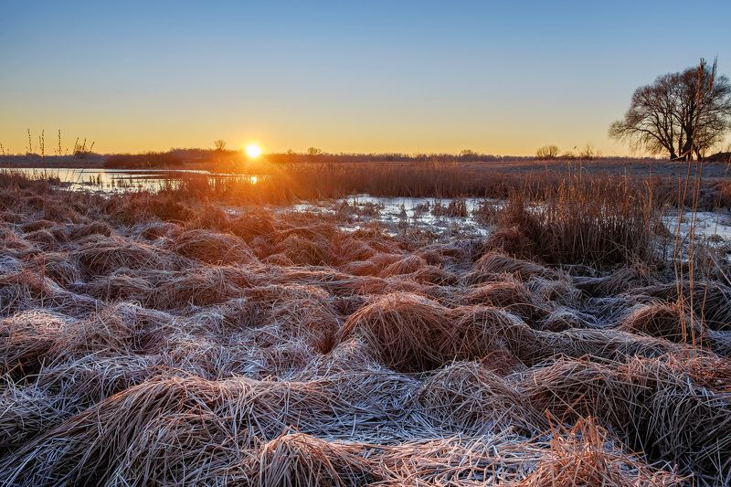 рассвет,мороз,природа,пейзаж,nature,landscape,dawn,sunrise Зимний рассветphoto preview