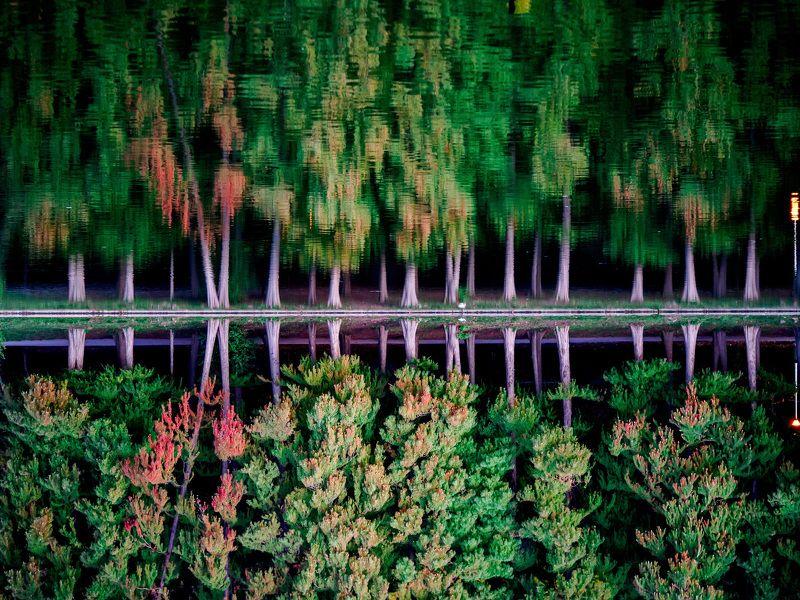 landscape, lake, trees, autumn, leaves, reflection fallacousticsphoto preview