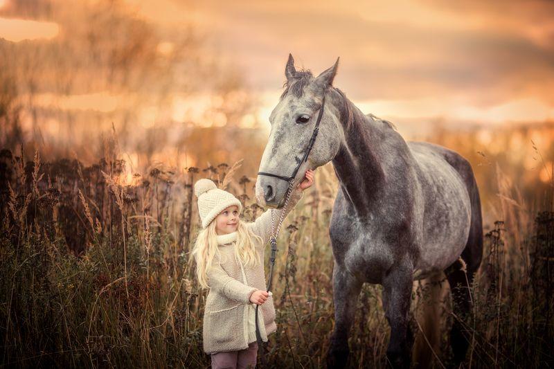 Девочка, лошадь, знакомство, закат, осень Первое знакомство.photo preview