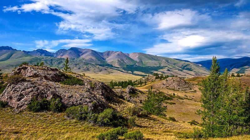 пейзаж, лето, горы, Горный Алтай  Красоты Горного Алтая. photo preview