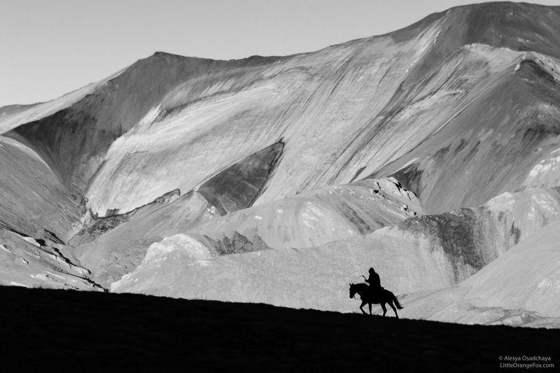 черно-белое, пейзаж, силуэт, горы, чабан, конь Путь домойphoto preview