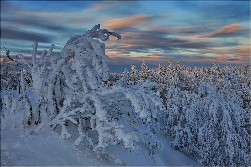 Зима ..продолжение..photo preview