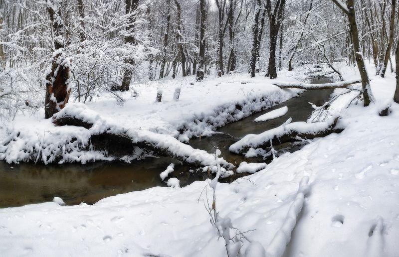 панорамка, камера телефона nokia x2 , cs 5 Зимние бродилкиphoto preview
