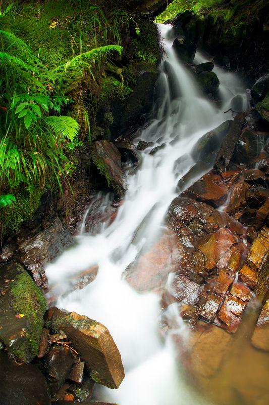 nature, landscape, mountains, water, spring, carpathians, ukraine Музыка ручьяphoto preview