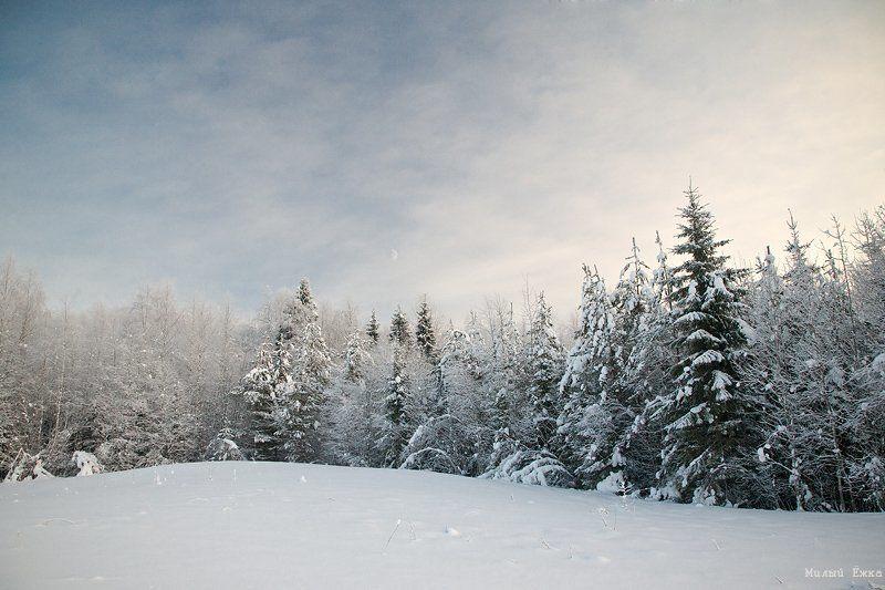 зимняя, сказка Стражи зимы....photo preview