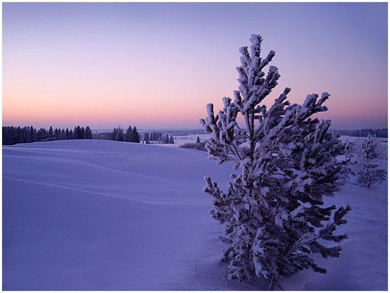 зима,мороз,вечер,январь,удмуртия Провожая день...photo preview