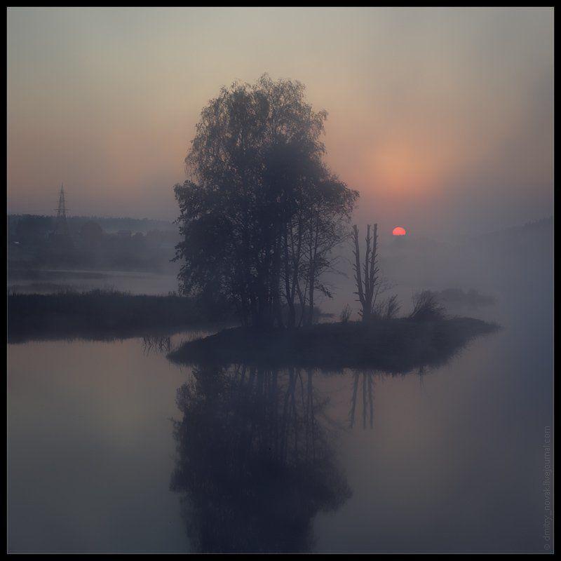 Ежик в туманеphoto preview
