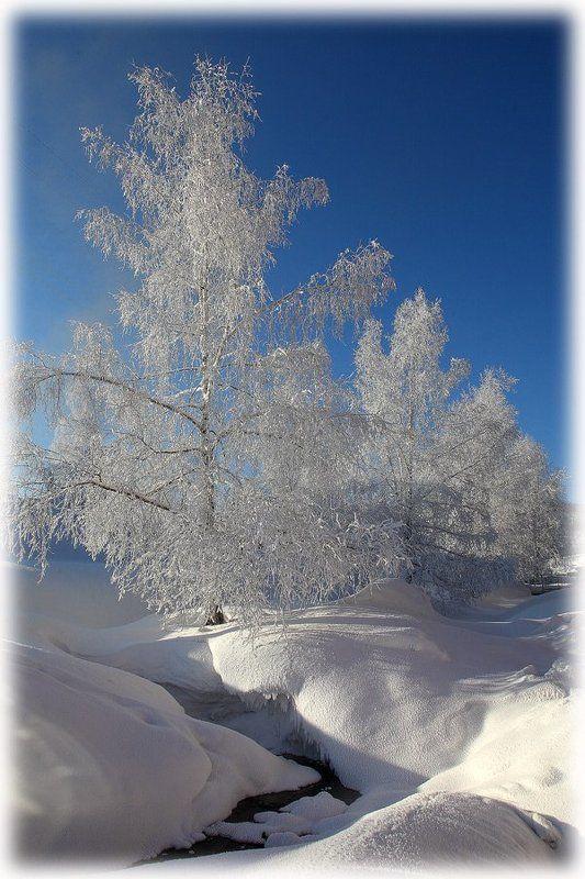 зима, пейзаж в инееphoto preview