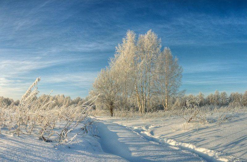 иней, снег, зима, пейзаж сереброphoto preview