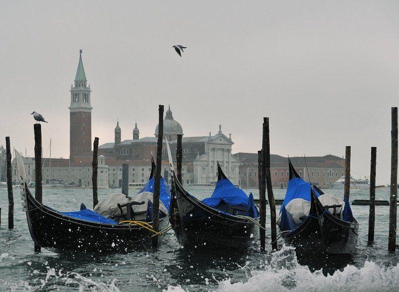 зимняя, венеция День, вечер, ночь, утроphoto preview