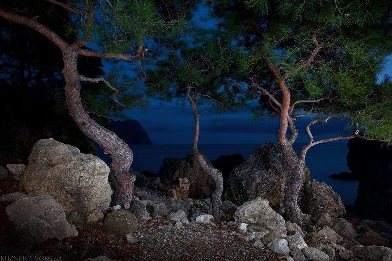 Ночь в Балаклавеphoto preview