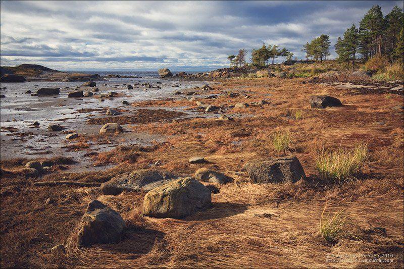 осень,белое море,сентябрь,умба Беломорье.photo preview