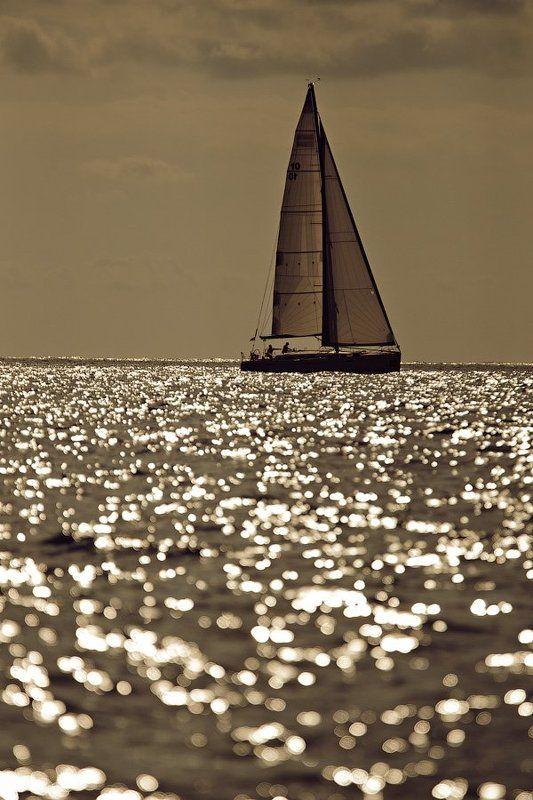 море photo preview