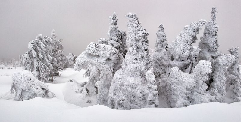 зима, снег, деревья, фактура, горы, урал, мороз, путешествия, снежные фигуры, антон селезнев Елкиphoto preview