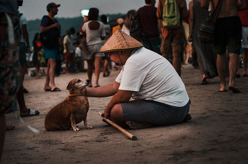собака друг человека, родственные души, собака и человек Родственные душиphoto preview