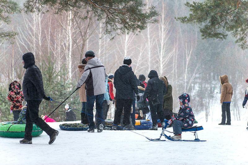 Городской парк / Январьphoto preview