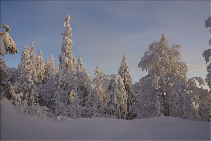Снежная...photo preview