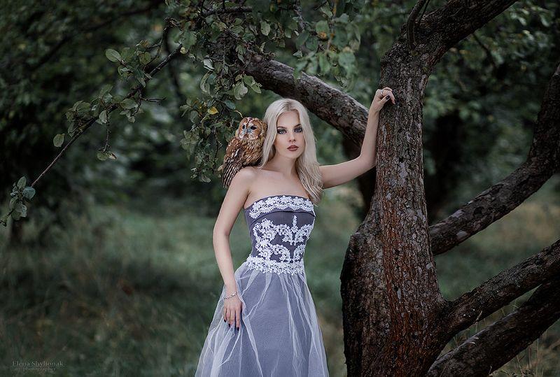 сова, модель, лес, осень, королева, осенняя, девушка, фиолетовое платье, сосны, девушка с совой лесная нимфаphoto preview