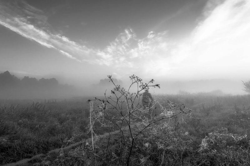 dawn,fog,sky,man,bike,sunrise,clouds,sunlight,nature,landscape,mist,nikon,dirt road, Old man and bikephoto preview