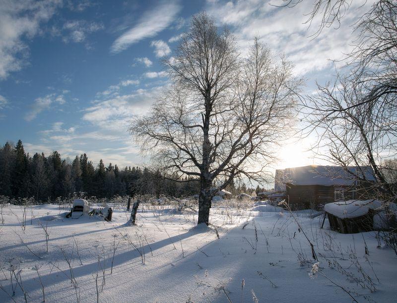 Настоящая зима.photo preview