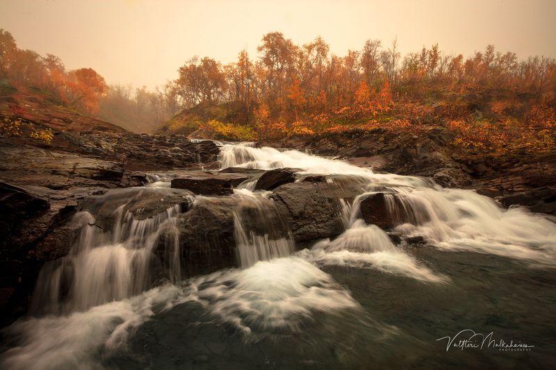 Вспоминая рыжую осень Лапландииphoto preview
