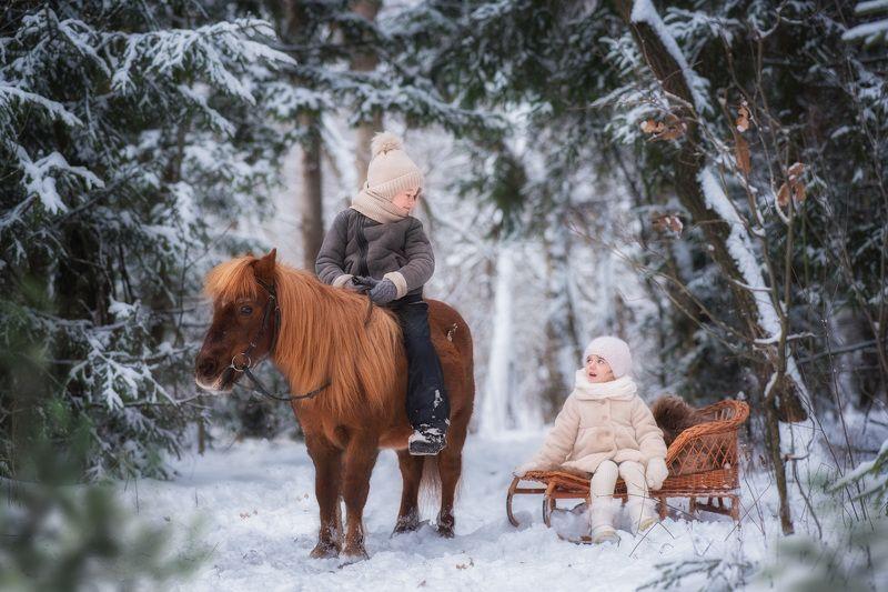 дети мальчик девочка лошадь лошадка пони зима мороз снег лес сосны деревья березы санки саночки прогулка Прогулкаphoto preview