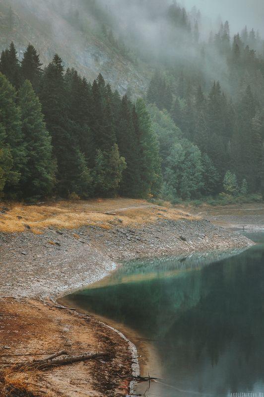 пейзаж, национальный парк, черногория, природа, ландшафт Дурмитор и туманphoto preview