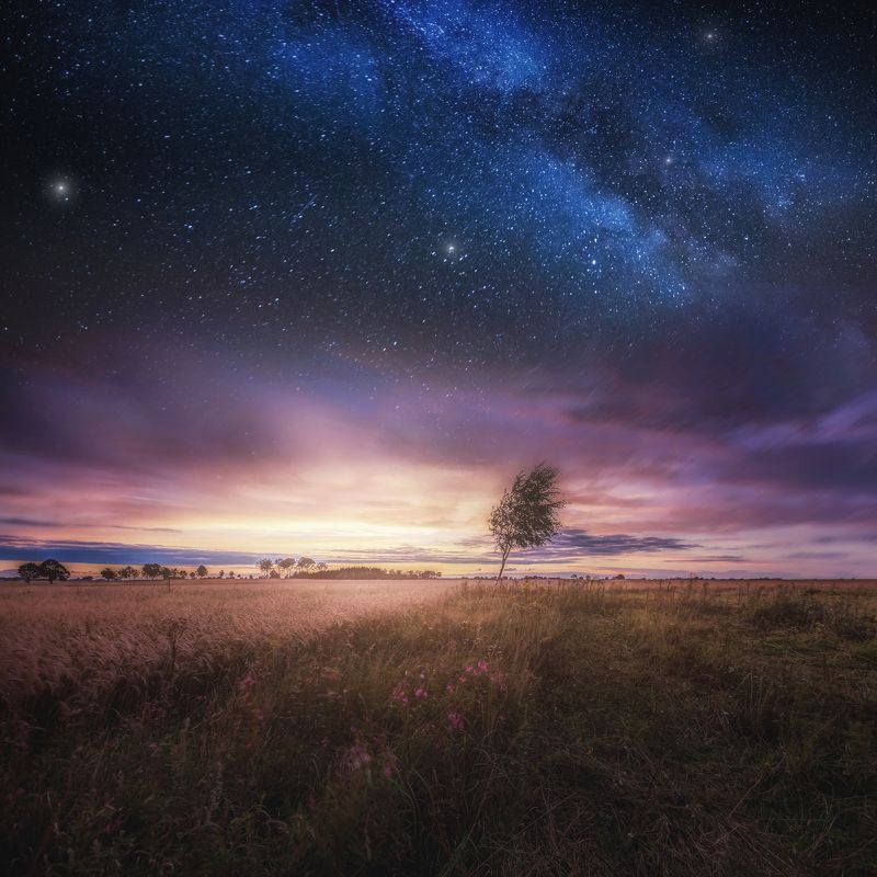 nature, landscape, night, day, field, meadow,  Distant meadows and fieldsphoto preview