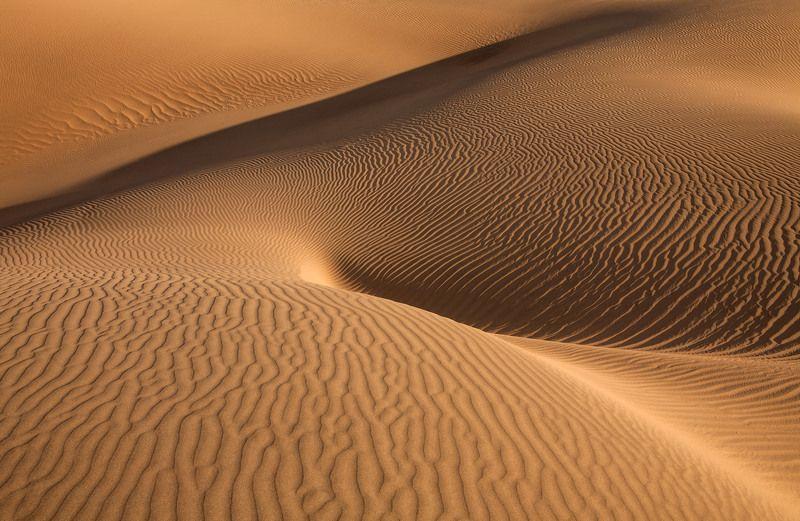 пустыня, песок, фактура, дюны, mesquite flat sand dunes, долина смерти, изгибы, формы, фантазия, антон селезнев Нежные изгибыphoto preview