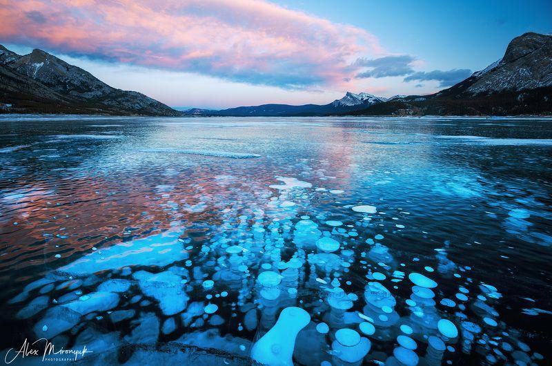 лед, зима, озеро, пузыри, закат, небо, канада, фото-тур, Волшебный ледphoto preview