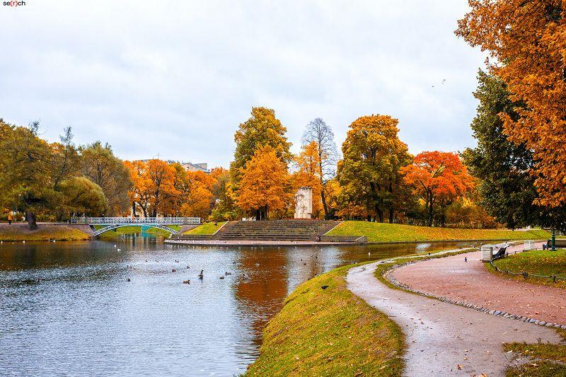 санкт-петербург, осень, парк, сад, деревья, золотая, листва, вода, мост photo preview