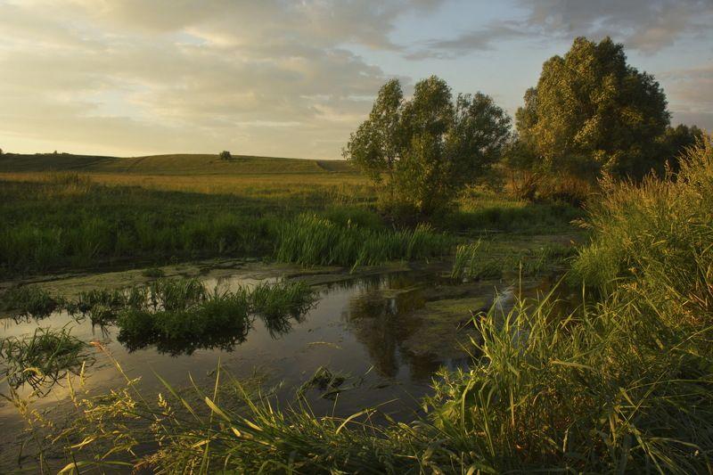 пейзаж лето река закат Вечер на речкеphoto preview