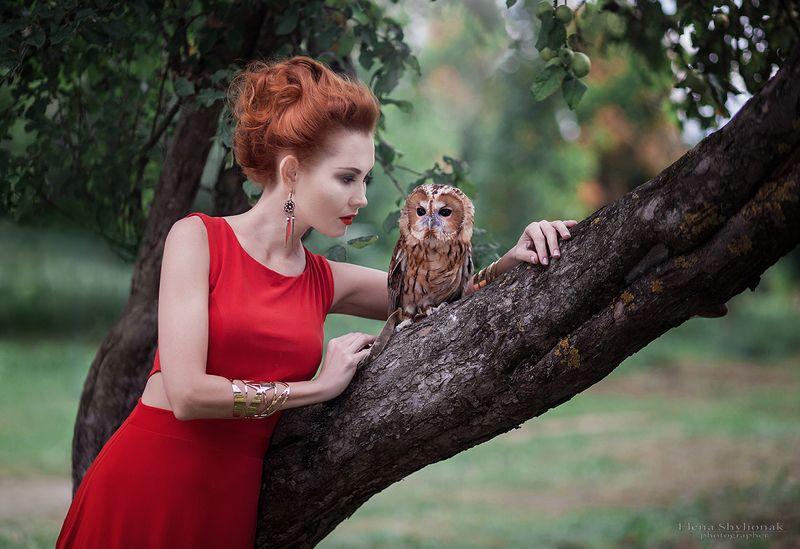 сова, девушка с совой, фотограф, модель, этническая одежда, осень ***photo preview