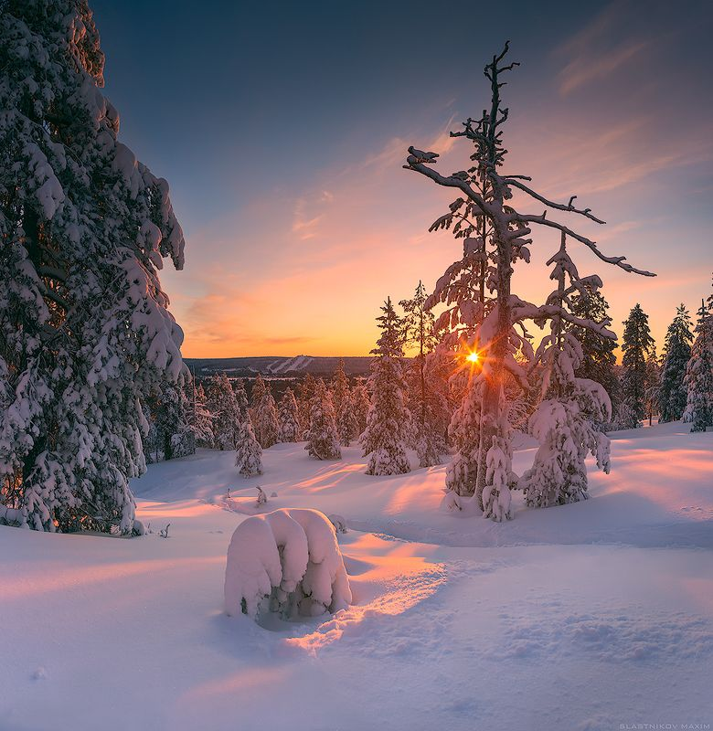 Lapland, Finland, snow, cold, winter, trees, sun, sunlight, sunset, alone, outdoor, scenic, freeze, cold, hills, mountains, explore, travel, Rovaniemi  Рованиемиphoto preview