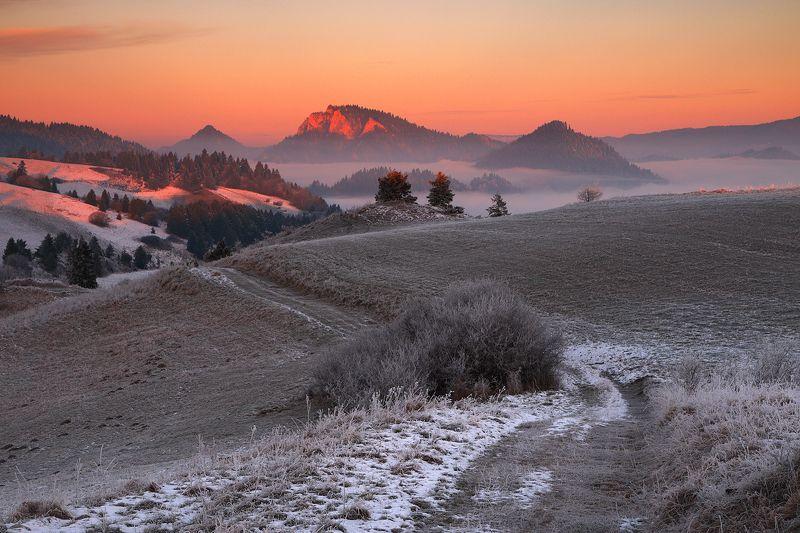 morning, sunrise, mountains, pieniny, trzy korony, light, mist, First lightphoto preview