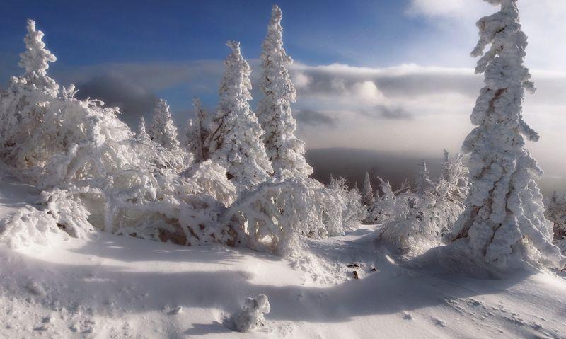 южный урал, уреньга Прошлогодний снегphoto preview