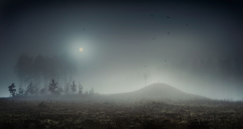 landscape , poland, surreal, man ,silhouette, forest ,moon Between moonset and sunrisephoto preview