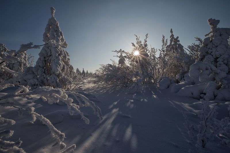 якутия, нерюнгри, зима, февраль Февральphoto preview