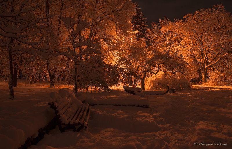 Прогулка ночным паркомphoto preview