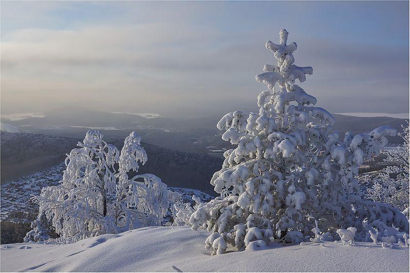 В зимних шубках...photo preview