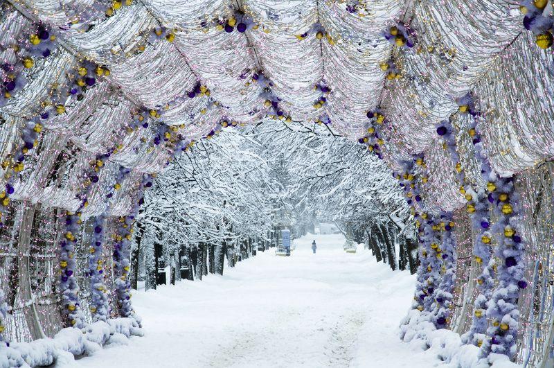 Москва, Тверской бульвар, зима, Новый год На Тверском бульвареphoto preview