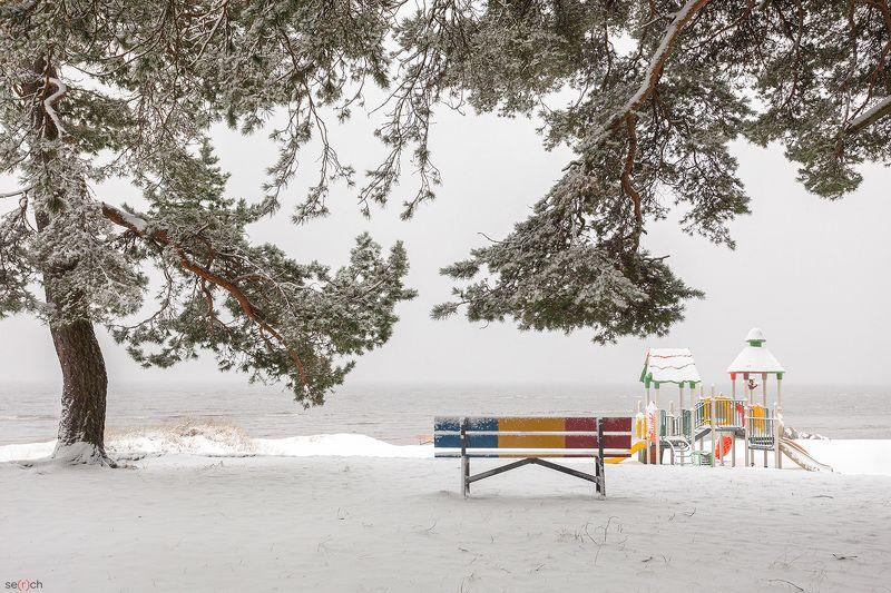 зима, снег, залив, дерево. скамейка, тишина, красота Безмятежностьphoto preview
