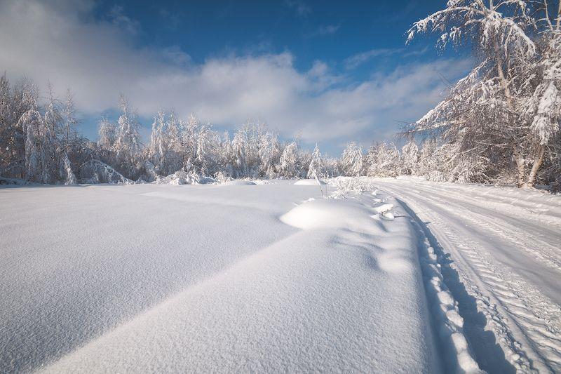 россия, подмосковье, зима, мороз, снег, небо, облака, иней, деревья Февральский полденьphoto preview